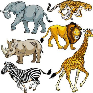 The wild animals essay elephant